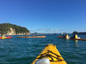 Latin School of Chicago students kayaking the Coromandel with Haka Educational Tours